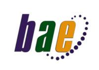 Blasant Agro Exim website